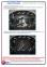 Защита двигателя и КПП HYUNDAI Solaris|Accent (2011+) 3